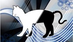 """Fedora 19 """"Schrödinger's Cat"""""""
