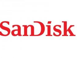 Logo von SanDisk