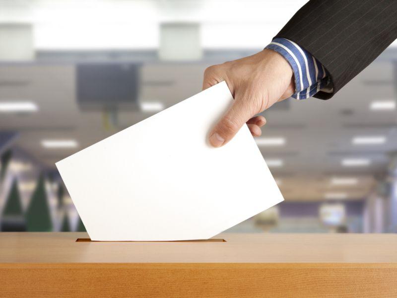 Die Parteien und das Netz: Wahlprogramme im Vergleich