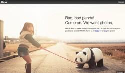 """""""Böser Panda"""" - Flickr nimmt Ausfälle mit Humor (Screenshot: News.com)."""