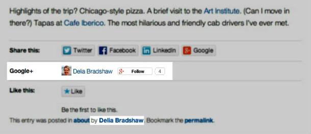Wordpress-Log-in mit Google+ (Screenshot: WordPress)