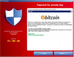 Cryptolocker gibt sich mit 0,5 Bitcoin zufrieden (Screenshot: F-Secure).