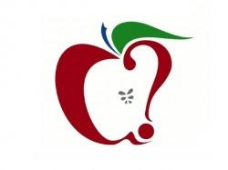 macrumors-logo