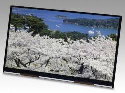 Das Tablet-Display von JDI löst 3840 mal 2160 Bildpunkte auf (Bild: JDI).