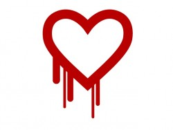 OpenSSL-Bug Heartbleed