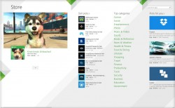 Alter Windows 8.1 Store (Screenshot: CNET)