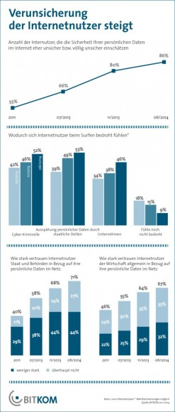 Immer mehr Internetnutzer halten ihre Daten im Netz für unsicher (Grafik: Bitkom).