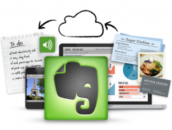 Evernote (Screenshot: Ed Rhee/CNET).