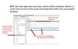 BBM speichert Nachrichten und Nutzernummern lokal im Klartext (Screenshot: SGP Technologies)