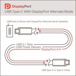 USB-Kabel vom Typ C können auch DisplayPort-Signale übertragen (Bild: VESA).