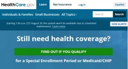 Problem-Site Healthcare.gov (Screenshot: ZDNet)