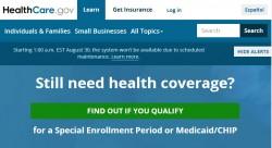 Problem-Site Healthcare.gov (Screenshot: ZDNet)