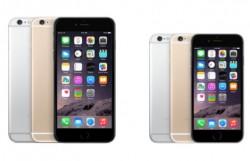 iPhone 6 Plus und iPhone 6 (Bild: Apple)