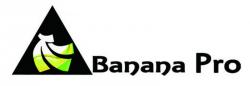Banana Pro Logo (Bild: Lemaker.org)