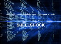 Shellshock (Bild: Kaspersky)