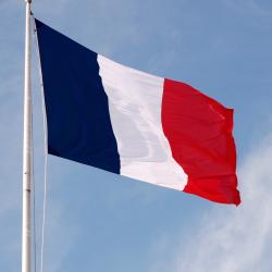 Flagge Frankreich (Bild: ZDNet.de)