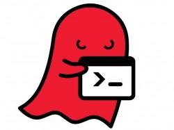 Die Ghost-Lücke gefährdet zahlreiche Linux-Systeme (Bild: Qualys)