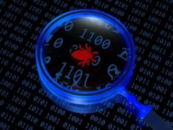Bug entdeckt (Bild: Shutterstock)