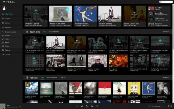 Tidal (Screenshot: CNET)