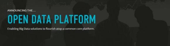 Open Data Platform (Bild: ODP)