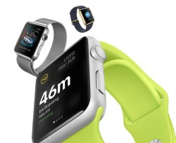 Apps auf Apple Watches (Bild: Apple)