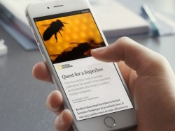 Instant Articles auf dem iPhone (Bild: Facebook)