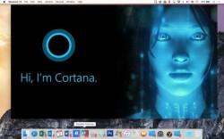 Cortana lässt sich direkt unter OS X ausführen (Bild: Parallels).
