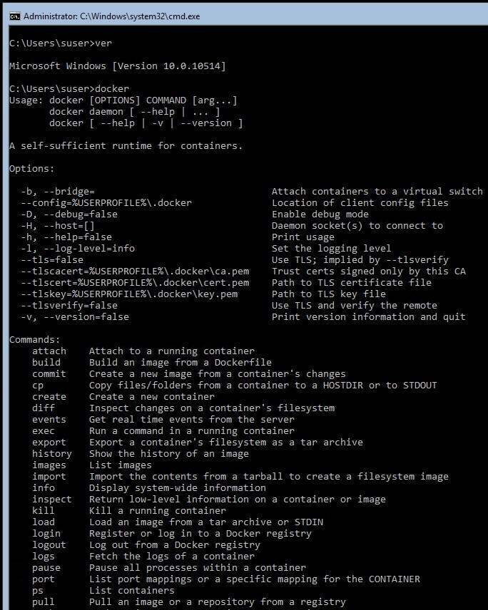 Docker-Container lassen sich in Windows Server 2016 auch mit dem Befehl docker verwalten (Screenshot: Thomas Joos).