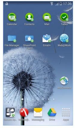 Mit MobileIron sichern Unternehmen die Apps auf den Smartphones/Tablets ab. Die verwalteten Apps lassen sich in eigenen Containern betreiben (Screenshot: MobilIron)