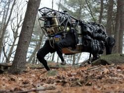 Boston Dynamics' Roboter BigDog kann sich auch durch unebenes Gelände bewegen und wurde vom US-Militär gefördert (Bild: Boston Dynamics).