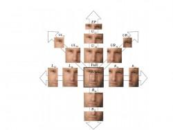 Zusammensetzung eines Gesichts aus 14 Segmenten (Bild: Google ATAP)
