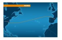 Facebook und Microsoft planen transatlantisches Unterseekabel
