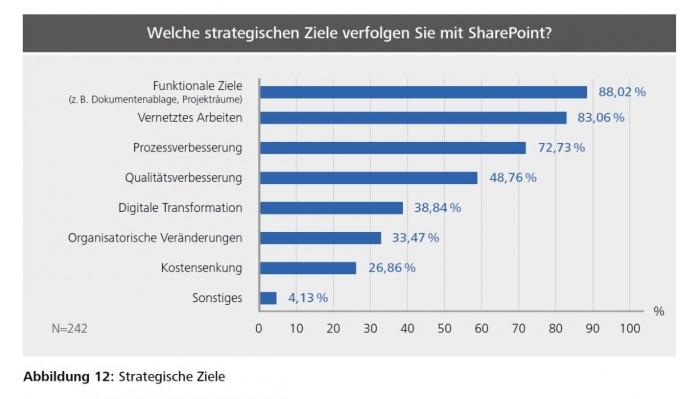 sharePoint_studie02 (Bild: Arno Hitzges, Thorsten Riemke-Gurzki)