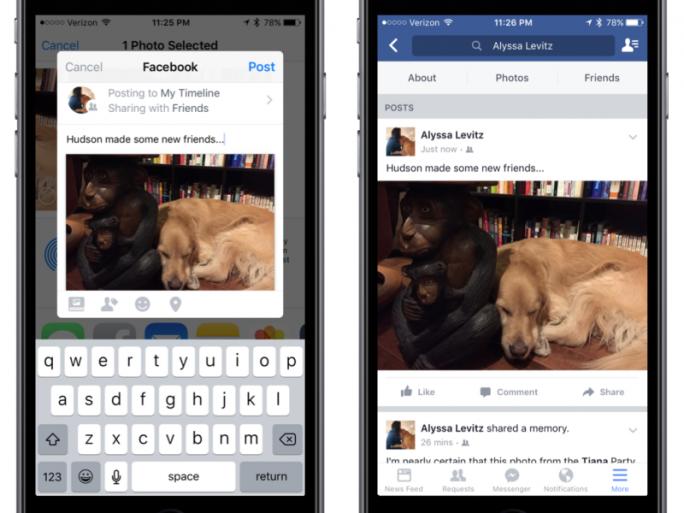 Das Sharing-Feature erlaubt, Inhalte aus einer iOS-App mit Facebook zu teilen (Bild: Facebook).