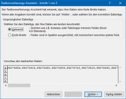 Excel: Assistent für das Aufteilen der Daten, Schritt 1 (Bild: ZDNet.de)