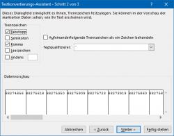 Excel: Assistent für das Aufteilen der Daten, Schritt 2 (Bild: ZDNet.de)