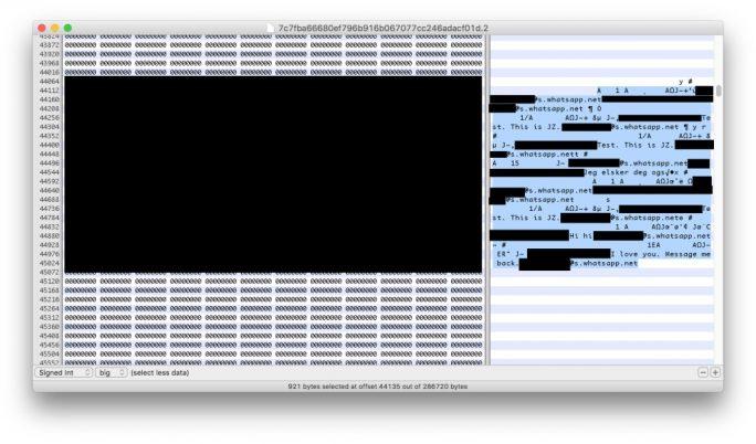 Unter iOS erlaubt die SQLite-Datenbank von WhatsApp die Wiederherstellung gelöschter Chat-Nachrichten (Screenshot: Jonathan Zdziarski).