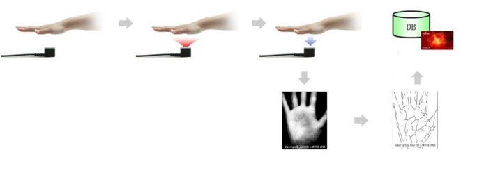 Die biometrischen Handflächenvenen-Scan-Technologie PalmSecure von Fujitsu (Bild: PalmPass/Fujitsu).