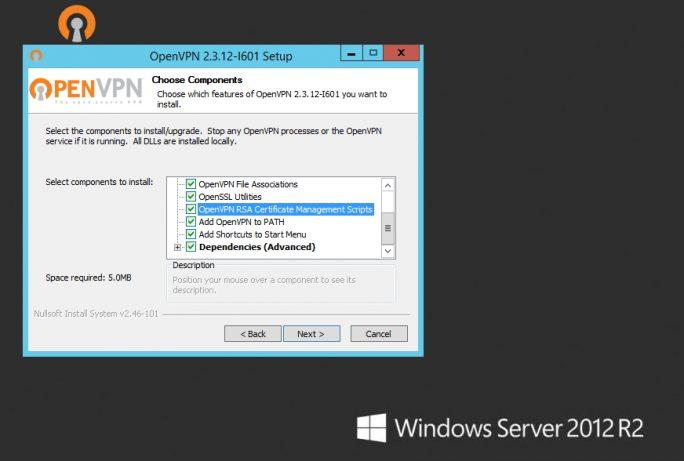 Auf Servern mit Windows Server 2012 R2 oder Windows Server 2016 erfolgt die Installation von OpenVPN mit einem Assistenten (Screenshot: Thomas Joos).