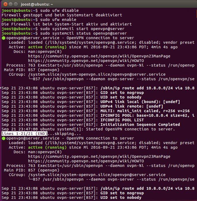 Im Terminal lassen sich Einstellungen für OpenVPN vornehmen und der Dienst starten (Screenshot: Thomas Joos).