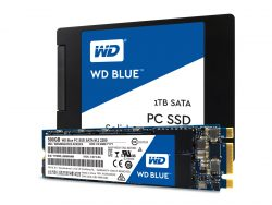 WD Blue SSD (Bild: Western Digital)