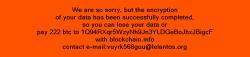 Üppige Forderungen: die Linux-Variante von KillDisk verlangt etwa den Gegenwert von 250.000 US-Dollar in Bitcoins. (Bild: ESET)