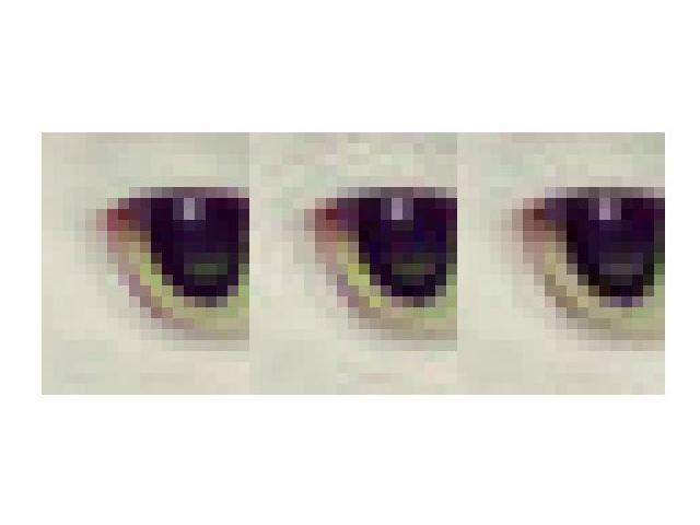 Google Guetzli (rechts) soll bei gleicher Dateigröße näher an das Original (links) herankommen als eine mit libjpeg komprimierte Bilddatei (mitte) (Bild: Google).