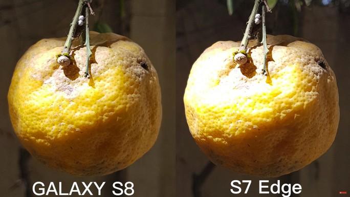 Kamera: Galaxy S8 im Vergleich zum S7 Edge (Bild: XEETECHCARE)