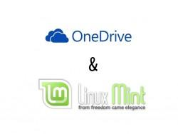 OneDrive unter Linux Mint nutzen (Bild: ZDNet.de)