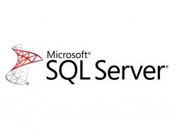 Microsoft SQL Server (Bild: Microsoft)