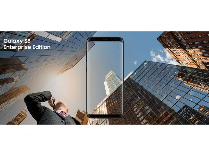 Galaxy 8 Enterprise Edition (Bild: Samsung)