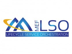Mit der Schnittstelle LSO Sonata können SDN-Architekturen von verschiedenen Netzwerkanbietern zusammenarbeiten und von Kunden selbst verwaltet werden. (Grafik: Metro Ethernet Forum)