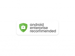 Android Enterprise Recommend (Bild: Google)