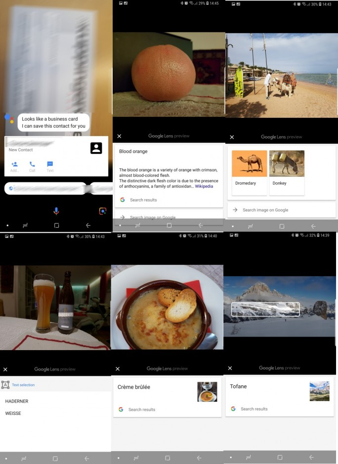 Google Lens erkennt zahlreiche Objekte (Screenshot: ZDNet.de)
